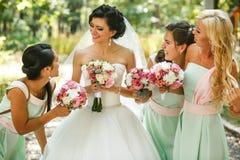 Admirer de demoiselles d'honneur de la jeune mariée images stock