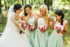 Admirer de demoiselles d'honneur de la jeune mariée photographie stock libre de droits