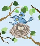 Admirer le nid Illustration de Vecteur