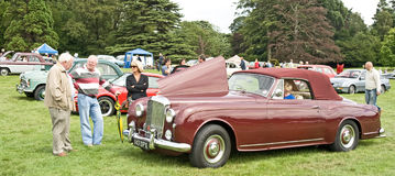 Admiring a Classic Bentley car at Ripley Castle. Royalty Free Stock Photography