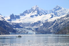 Admiring Glacier Bay Stock Photo