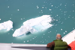 Admiring icebergs Stock Image