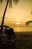 Admiring the sunset. Young woman enjoying the beautiful sunset Stock Photos