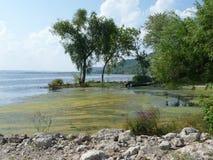 Admission de rivière photos stock
