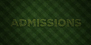 ADMISSIONS - fresh Grass letters with flowers and dandelions - 3D rendered royalty free stock image Stock Photo