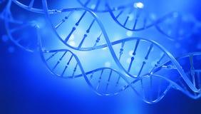 ADN ?tude de structure de g?ne de cellule Structure de mol?cule d'ADN illustration de la double h?lice 3D illustration de vecteur