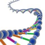 ADN 1 Imagens de Stock