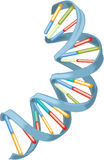 Adn. DNA helix representation isolated over white background stock illustration