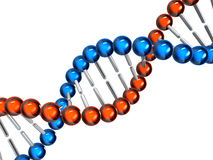 ADN Fotos de Stock