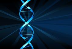 ADN Photos stock