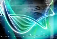 ADN Imagens de Stock Royalty Free