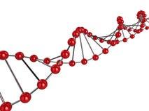 ADN 3d Images libres de droits