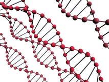 ADN 3d Fotografia de Stock Royalty Free
