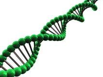 ADN 3d ilustração royalty free