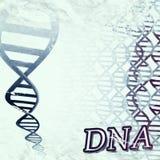 ADN Foto de Stock