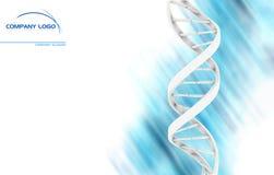 ADN illustration libre de droits