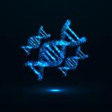 ADN abstraite Structure moléculaire au néon Photo stock
