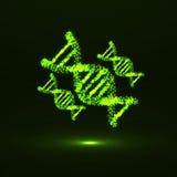ADN abstrato Estrutura molecular de néon Foto de Stock