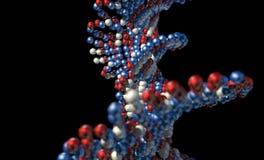 ADN Atom Stem imagens de stock