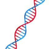 ADN de molécule illustration stock