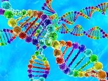 ADN do arco-íris (ácido deoxyribonucleic) com fundo azul Fotos de Stock Royalty Free