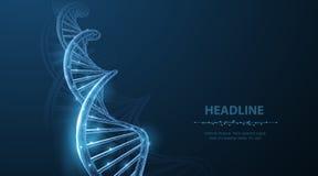 ADN Espiral poligonal abstrata da hélice da molécula do ADN do wireframe 3d no azul ilustração royalty free