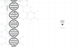 ADN et fond médical et de technologie molécule futuriste s Photo libre de droits
