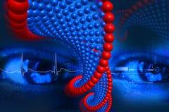 ADN et oeil Image libre de droits