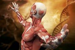 ADN, neurones molécule et homme sur le fond d'art illustration 3D Image libre de droits