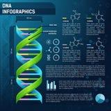 ADN pour l'infographics de la science Photos stock