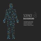 ADN, symbole génétique de l'homme avec la structure de molécule d'ADN Photographie stock