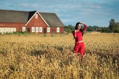 Ładna brunetka w Szwedzkim pszenicznym polu Obrazy Stock