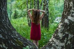 Ładna dziewczyna w czerwieni sukni w lato lesie w górach Obrazy Stock