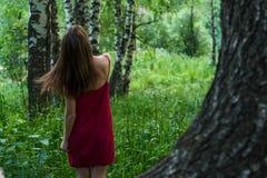 Ładna dziewczyna w czerwieni sukni w lato lesie w górach Zdjęcia Royalty Free