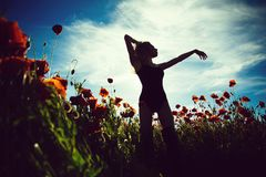 ładna dziewczyna w kwiatu polu makowy ziarno Obraz Stock