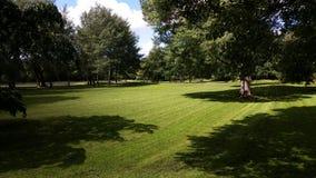 Ładna skoszona trawa Obrazy Stock