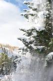 ładna zima Zdjęcie Royalty Free