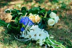 Ładni kwiaty na trawie Obraz Stock