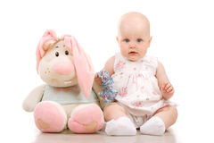 ładny dziecko królik Obraz Stock