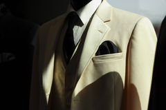 ładny garnitur Zdjęcie Stock