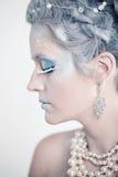 Ładny kobiety mody model z zimy Makeup Obraz Stock