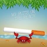 Żadny krupony na plaży ilustracji