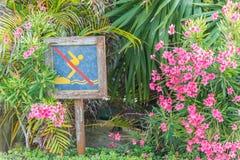 Żadny nurkowy znak przy pływackim basenem Fotografia Royalty Free