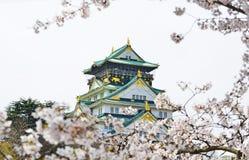 Ładny Osaka kasztel Obrazy Stock