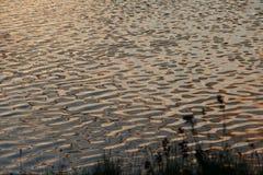 Ładny wieczór jeziorem Fotografia Royalty Free