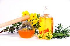 Adoçamento do corpo do mel Imagens de Stock