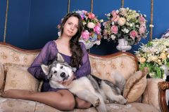 Ado de fille et malamute de chien sur le sofa Photos libres de droits