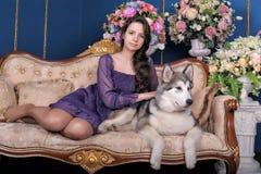Ado de fille et malamute de chien sur le sofa Photos stock