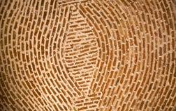 Adobe-Backsteinmauer-konzentrische Kreise Mexiko Lizenzfreie Stockfotografie