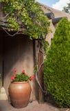 Adobe-Blumentopf in einem Haus des luftgetrockneten Ziegelsteines umgeben durch Laub Stockfotografie